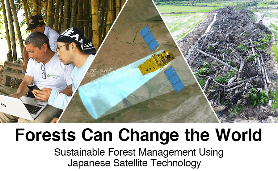 Forests Can Change the World: Sustainable Forest Management Using Japanese Satellite Technology